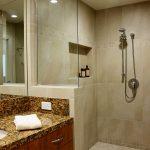 Guest Shower Remodel